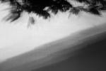 Foliage diagonal