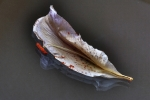Dried lily with stamens on glass 2