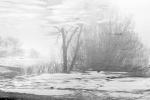 Frozen pond reflection 3